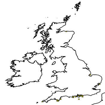 Map of the UK with areas shaded to show the UK distribution of American Lobster