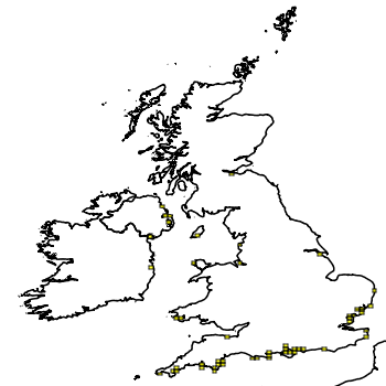 Map of the UK with areas shaded to show the UK distribution of Japanese kelp