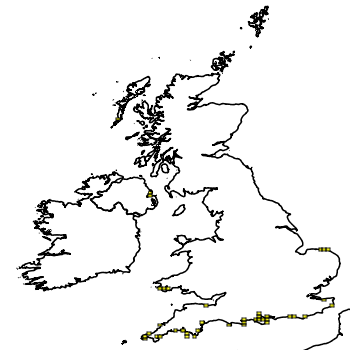 Map of the UK with areas shaded to show the UK distribution of Devil's Tongue Weed