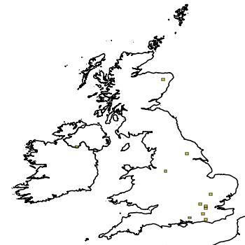 Map of the UK with areas shaded to show the UK distribution of Siberian Chipmunk
